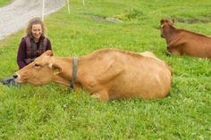 #FarmLove - Richardson Family Farm | Cabot Creamery