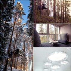 Treehotel in Sweden Room The Cabin