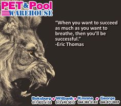 """""""When you want to succeed as much as you want to breathe, then you'll be successful."""" - Eric Thomas #PetPoolWarehouse #SundayMotivation"""