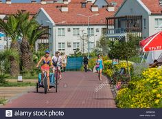 Download this stock image: Young people on bicycle in motion on a bicycle path…
