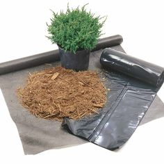 What's the Best Weed Barrier? - Tips for a Weed-Free Yard: http://www.familyhandyman.com/landscaping/weed-killer-tips