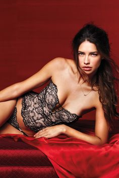 Victoria's Secret Valentines day 2014. I want this corset SO BAD. pissed its not for sale on the website anymore.
