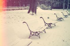 snow-covered benches.