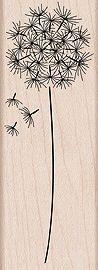 Hero Arts Rubber Stamp DANDELION Flower Seed G4917