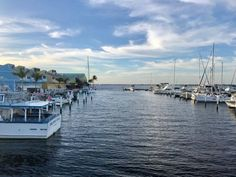 15 fun things to do in Punta Gorda Florida include outdoor adventures, Gulf Coast beaches, tasty local food and drink, and comfortable downtown lodging. Florida Vacation, Florida Travel, Scandinavia Cruise, Florida Gulf Coast Beaches, Englewood Beach, Viking Ocean Cruise, Punta Gorda Florida, Viking River, Fun Places To Go