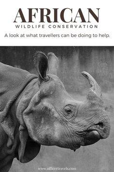 6d7206554c7e 277 Best Travel Tips images in 2018 | Travel advice, Travel Hacks ...