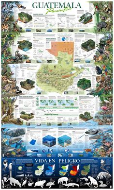 Guatemala, living paradise, infographic by Angel García