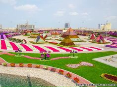 Super flower power - World's largest natural flower garden opens in Dubai  #TheDubaiMiracleGarden #Flowers