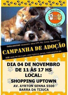 BONDE DA BARDOT: RJ: Campanha de Adoção de Animais do Grupo Adoráveis Vira-Latas acontece no Uptwonw Barra, neste sábado (04/11)