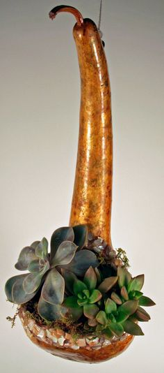 Dipper gourd succulent and cactus hanging planter by EricsGourdArt