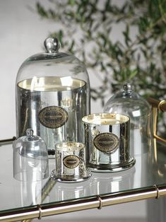 Candles & Home fragrance | zodax Scented Candles, Candle Jars, Best Smelling Candles, Acai Berry, Pomegranate, Berries, Fragrance, Gifts, French