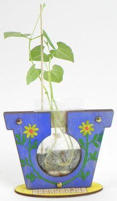 Pozorovací květináč Kindergarten, Planter Pots, Montessori, Spring, Nature, Kindergartens, Preschool, Preschools, Pre K