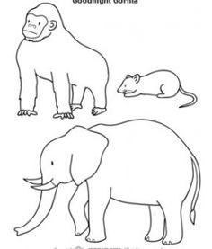 g for gorilla coloring page with handwriting practice | january ... - Silverback Gorilla Coloring Pages