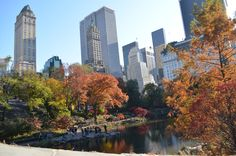 Central Park, New York: It is one of my ultimate dreams to sit down on one spot in the Central Park while eating bagel and marvelling at the NYC skyline.