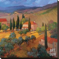 Coral Sunset Tuscany Stretched Canvas Print by Philip Craig at Art.com