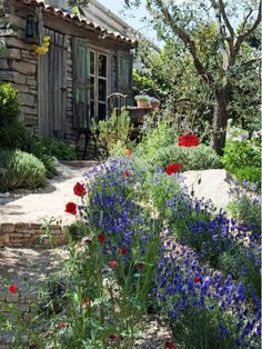 Mediterranean Gardens Capture Sunny Regional Style - Home and Garden Design Idea's