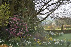Lovely gardens at Glebe House Ireland Co Meath
