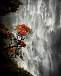 Devil's Punch bowl Falls, New Zealand.