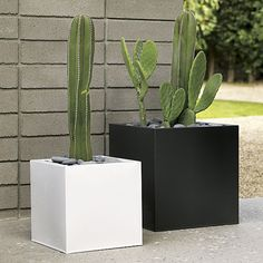 Black large planter squares up sleek and modern. Protected for indoor and outdoor settings, matte-finished galvanized steel plays up refined industrial to dramatic effect.