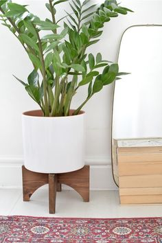 If you're looking for a simple way to organize and display all of your plants, then you need to check out these awesome indoor / outdoor DIY plant stand ideas for inspiration! #plantstand #gardenideas #indoorplants #diy Modern Plant Stand, Diy Plant Stand, Small Plant Stand, Wooden Plant Stands, Diy Wall Decor, Diy Home Decor, Diy Interior, Plant Holders, Large Plants