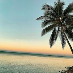 Caribbean Painkiller Recipe: A Summertime Favorite Visit Jamaica, Jamaica Vacation, Jamaica Travel, Vacation Deals, Bermuda Vacations, Vacation Spots, Caribbean Coleslaw Recipe, Caribbean Recipes, Bahama Mama Cocktail