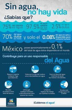 17 Tendencias De Cuidado Del Agua Para Explorar Cuidado