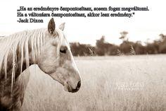 Horse Riding, Minden, Horses, Animals, Animales, Animaux, Animal, Animais, Horse