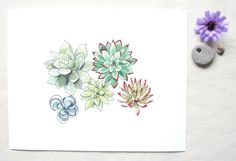 Succulents Watercolor Print Succulent Art by BeWildandFree