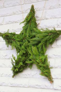 Top 40 Christmas Star Decorations Ideas - Christmas Celebration - All about Christmas Noel Christmas, Green Christmas, Christmas Design, All Things Christmas, Winter Christmas, Christmas Wreaths, Xmas, Simple Christmas, Natural Christmas Decorations