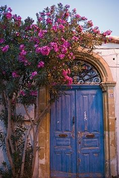 Old doors in Nicosia, Cyprus. Visit our website: www.tourguidemostar.com #tourguidemostar #inspiration #travel #travelworld #flowers #nature #travelworld #doors #photography #cyprus