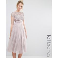 Little Mistress Tall Short Sleeve Lace Bodice Midi Dress With Tulle... (435 RON) ❤ liked on Polyvore featuring dresses, pink, ruched cocktail dress, pink lace cocktail dress, pink midi dress, tulle cocktail dresses and lace dress