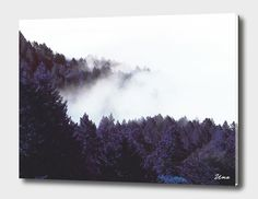 «Mystery Fog», Exclusive Edition Acrylic Glass Print by Uma Gokhale - From $69…