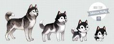 Evolution's of the husky