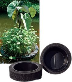Island planter 12 in by that fish place for Plastic floating pond plants