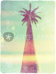"""""""Californication"""" Photography by Aline Boni posters, art prints, canvas prints, greeting cards or gallery prints. Find more Photography art prints and posters in the ARTFLAKES shop. Canvas Prints, Art Prints, Palm Trees, Caribbean, Art Photography, Greeting Cards, Cool Stuff, Gallery, Woods"""