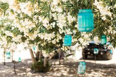 DIY died jars hanging from the trees
