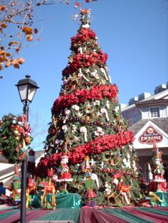 Smoky Mountain Christmas Dollywood | Smoky Mountain Christmas at Dollywood | Inside Sevierville