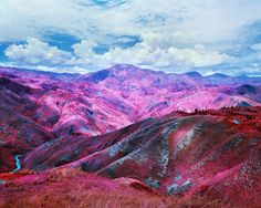 Richard Mosse's photography by Ben Mattison