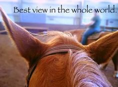 Best view in the whole world is on my horse back