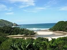 gonubie beach - Google Search Nature Reserve, South Africa, Beaches, Southern, River, Dreams, Google Search, Outdoor, Outdoors