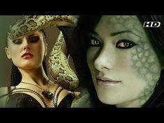 Interesting videos: Lady Anaconda   Hollywood adventure Movie l Hindi ...