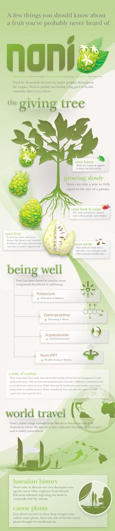 Understanding health benefits of Noni Fruit (Morinda Citrifolia), what is fact and what is fiction. afaircloth.kyani.net