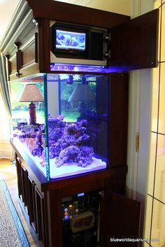 Don's High Tech reef tank, built by Blue World Aquarium, is an exercise in futurism resulting in a stunningly unique marine aquarium 'machine'.