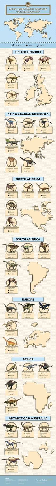 What Dinosaurs Roamed Which Countries #Infographic #Animal #History