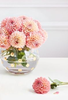 just like mom. shop mother's day gifts from kate spade new york. just like mom. shop mother's day gifts from kate spade new york. Ikebana, My Flower, Flower Vases, Beautiful Flowers, Craft Flowers, Dalia Flower, Glass Flowers, Beautiful Pictures, Cactus Plante
