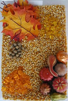 Beautiful Fall Sensory Bin - using corn gives it a nice fall color and would not be as messy as sand. I would use real leaves and possibly add mini pumpkins