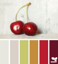 Design Seeds: cherry palette 10.11.13