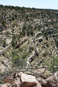 Despite my fear of heights, I decide to hike down Walnut Canyon to view the ruins left by the Sinagua Indians.  The park service warned that the hike was strenuous, but what's a mile when you routinely walk six in Nashville?