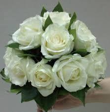 Картинки по запросу фото белых роз