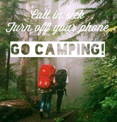 Call in Sick, Turn off your Phone, Go Camping…  I'm in…who is with me?